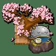 戦国松姫伝-JP
