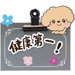 Flowers and Toy poodle (condition)
