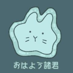Rabbit amoeba