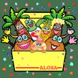 ALOHA's Part2