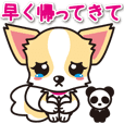Cute Chihuahua Sticker.Spoiled child