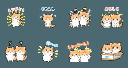 Kitten couple Tsukushi and Anzu