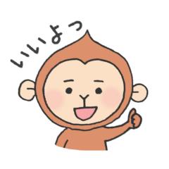 A useful little monkey