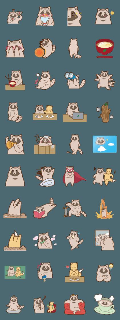 funny funny raccoon