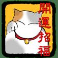 LUCKY Japanese CAT