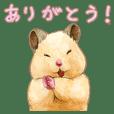 ハムスター助六の日常4 【会話編】