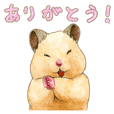 Hamster Life SUKEROKU4 (convo)