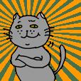 The Tamuras' cat 2