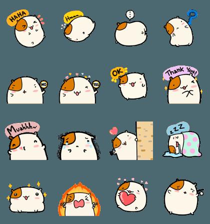 Hammy the fatty hamster