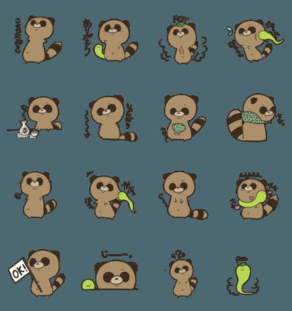 A little cute raccoon