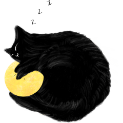 貓在做月在看