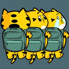 橘色的胖Teemo貓