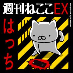 HACCHIName/Stress Society