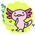 Axolotl Sticker of daily life