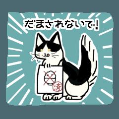 猫の同居人