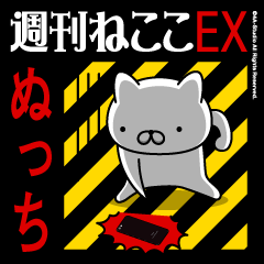 NUCCHIName/Stress Society