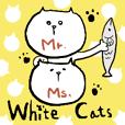 Mr. Ms. White Cats