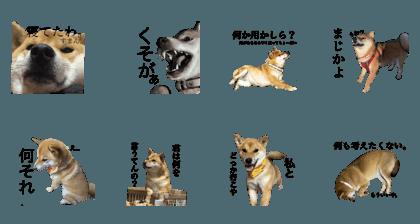 Matsushita_20200405185744