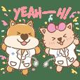 หมาแมวแสนสุข สุขภาพดีที่ BPH