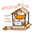 """The fluffy fox"" work from home"