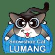 Snowshoe Cat Lumang (ENG)