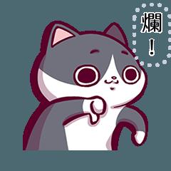 廢貓阿米 - 充滿嘲諷的訊息貼圖!