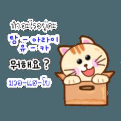น้องแมวน้อย สอนภาษาเกาหลี