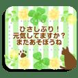 ネコとクローバー★メッセージスタンプ