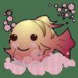 fish Baby