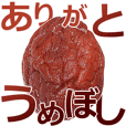 Pickled plums is umeboshi