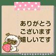 パグちゃん♡メッセージ