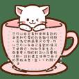 白貓♡定制留言