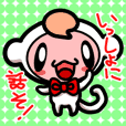 Pure white monkey