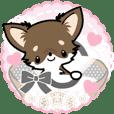 Kawaii Chihuahua 4 (English)