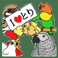 世界の鳥図鑑