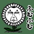 Bunga momok