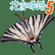 花言蝶語-Part 5