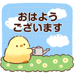 Soft and cute chick(message)