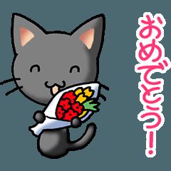 Congratulations part 2 (Small cat)
