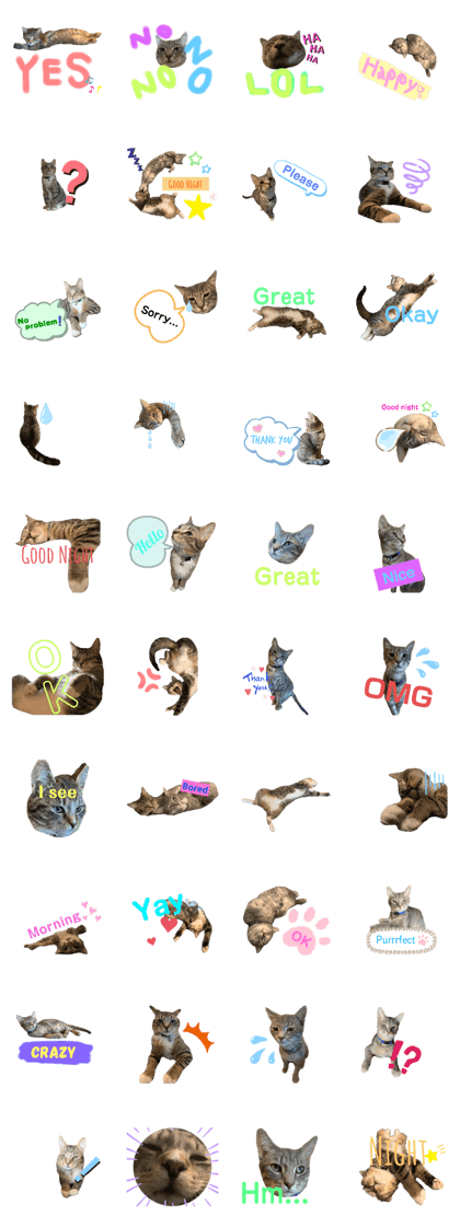 Castor and Poly Stickers