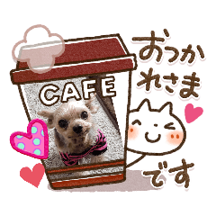 yu_20200414135015