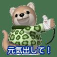 Funny shiba-inu 2