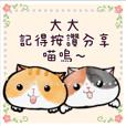 丸貓的日常1-訊息貼圖丸貓貓