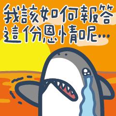 Mr. Shark truth