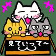 Three Little Nyanko
