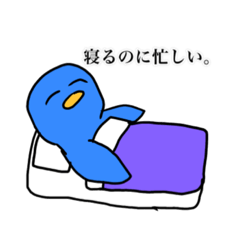 World__bird