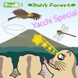 Yacchi (YF 5)