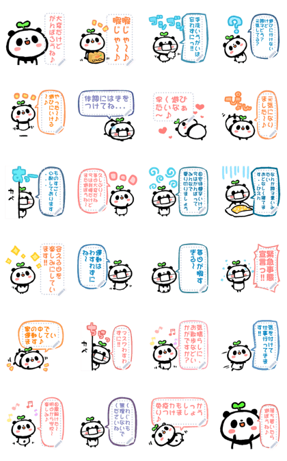 Kopanda panda[Message]