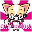 Cute Chihuahuas sticker