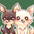 SHIROCHIWACHAN&KUROCHIWACHAN
